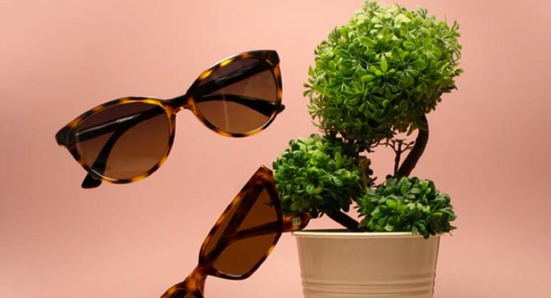 Duty Free – Sunglasses